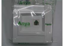 Telefonní zásuvka RJ11, Anya polar